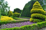 Levens Hall 102 by Forestina-Fotos