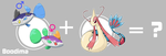 The mystery of Boodima and Milotic by Marix20