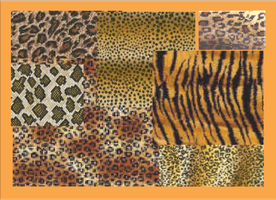 Tiger Skins 2004 by DanaHaynes