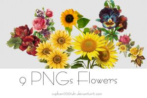 [Pack Resources #1] 9 PNGs Flowers by vupham2001dn