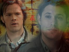 Wincest Wallpaper by thnksfrthwilliam