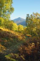 Schiehallion, Scotland VII by younghappy