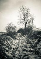 Old Ravine by Sudlice