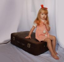 The suitcase_20 by anastasiya-landa