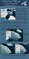 Tilikum Colouring Tutorial Pt. 2 by SyKoticOrKa