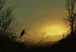 sunset by Beus-B