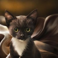 Little Whiskers by ThreshTheSky