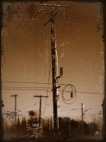 Telephone Poll in Antique by GeneLythgow
