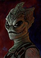 Silurian by NIK-Nick