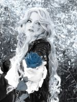 Blue rose by Schattenspiele