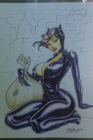 Catwoman by Cameron Blakey by cameronblakeyart