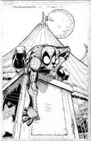 Marvel Adventures Spidey cover by RolandParis