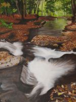 Water Falls, Falling Leaves by teh-silver-wolfeh