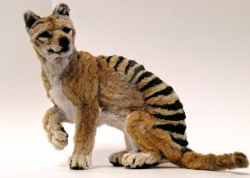 Small Thylacine by afiriti