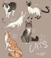 Catsss by 1skylight1