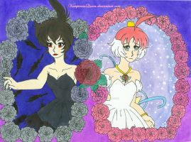 Black Swan vs White Swan (COMPLETE) by VampiresaQueen