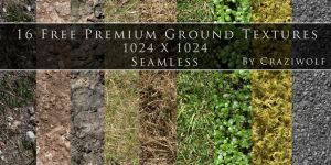 16 Free Premium Seamless Ground Textures 1024X1024 by craziwolf