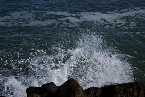 Wave by MaximePerrin