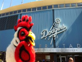Felted Chicken Head at the Dodgers Game! by AlwaysSuagarCoated