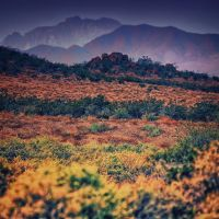 The Good Earth by clippercarrillo