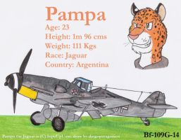 Pampa and his Bf-109G-14 by DingoPatagonico