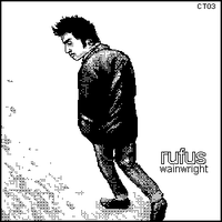 Rufus Wainwright 2 by caitlin-t