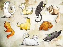 Many Cats Many Cats Many Cats by FionaHsieh