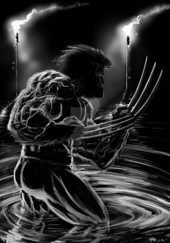 Wolverine by Bonorye
