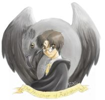 Harry Potter 2 colored by froggiechan
