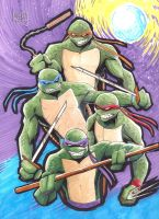 Turtles Commission, the sequel. by LangleyEffect