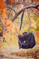 lost bag by theoryNpractice