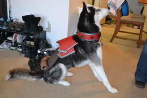 World of Warcraft costume - horde worg mount by pinkflamingo2814