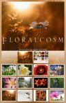 Floralcosm Calendar by wroth