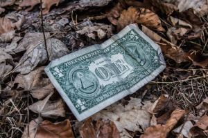 ONE Dollar by pizza395