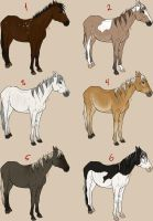 Horse rescue adopts by celinaclraw