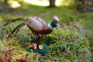 Ring-necked Pheasant by The-World-of-Megan