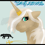 SkyCanvas Head Shot by DracKeagan
