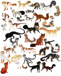 Lists of MY cats by INfernoLynx