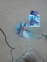 Coyote Chalk Head Sketch by BenRusk