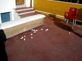 Untitled-White Paper On Floor by akipo