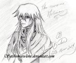 The awesome Mortician ( Undertaker ) by Sesshomaru-love