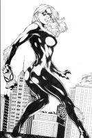 Black Cat Commission Inks by JPMayer