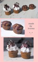 chocolate cupcakes and muffins by Ivonea