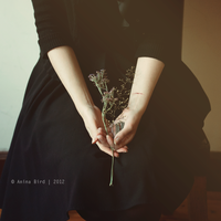 What you can't bear in me by Anina-Bird