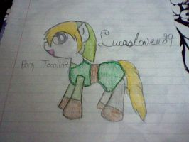Its a toonlink pony by Lucaslover89