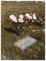 Mother's Grave on Her Birthday by skoticus