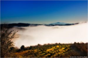 Morning Fog by Marcello-Paoli
