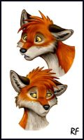 Random Fox by Skia