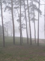 Foggy Background 1 by loopyker-stock