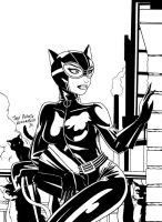 Catwoman by Cernunos